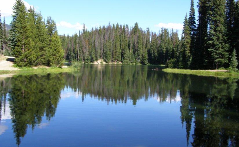 I'VE GOT SUMMER ON THE BRAIN – FRIDAY'S PHLOG – JUNE 22,2012