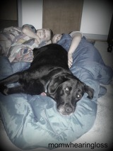 A BOY'S BEST FRIEND – FRIDAY'S PHLOG FOR JANUARY 18,2013