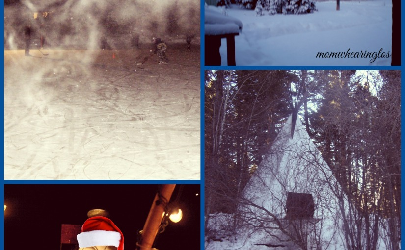 A winter Storm – Friday's Phlog for December 6,2013