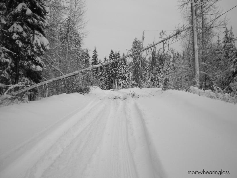 THE WHITE STUFF – FRIDAY'S PHLOG FOR DECEMBER 20,2013