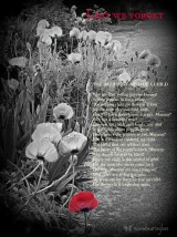 Lest We Forget – Friday's phlog for November 7, 2014